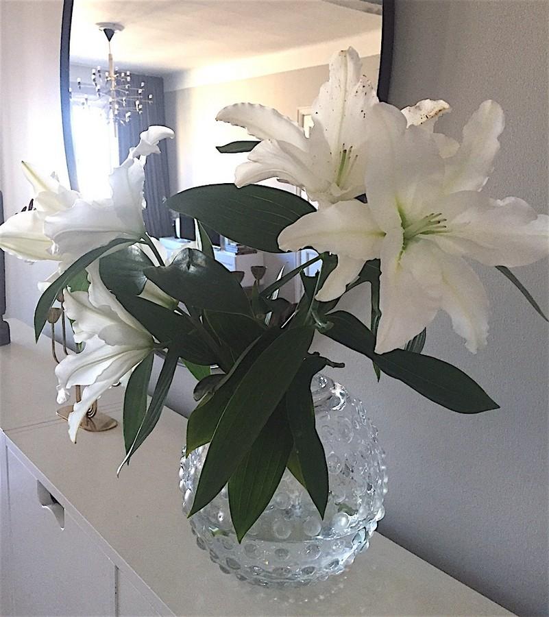 Blommor - riktiga stämningshöjare